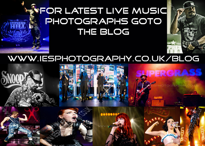 music Photographer Photography